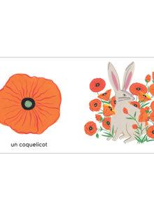 Les couleurs de mon jardin - Agathe Singer - coquelicot Maison eliza