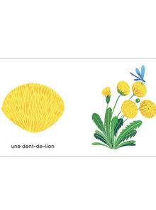 Les couleurs de mon jardin - Agathe Singer - pissenlit Maison eliza